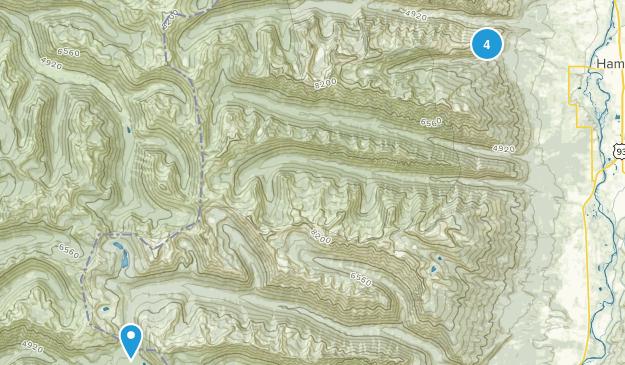 Hamilton, Montana Dogs On Leash Map