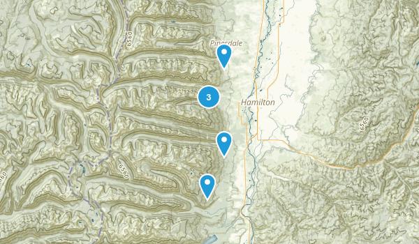 Hamilton, Montana Walking Map