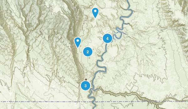 Hillsboro, Montana Dogs On Leash Map