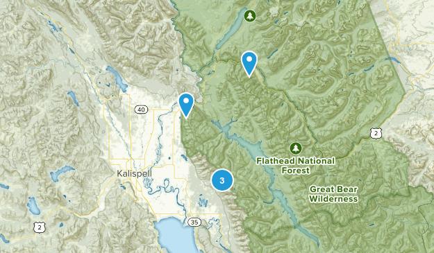 Kalispell, Montana Wild Flowers Map