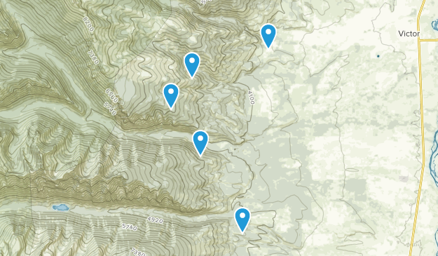 Victor, Montana Dog Friendly Map