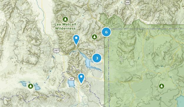 Best Bird Watching Trails near West Yellowstone, Montana