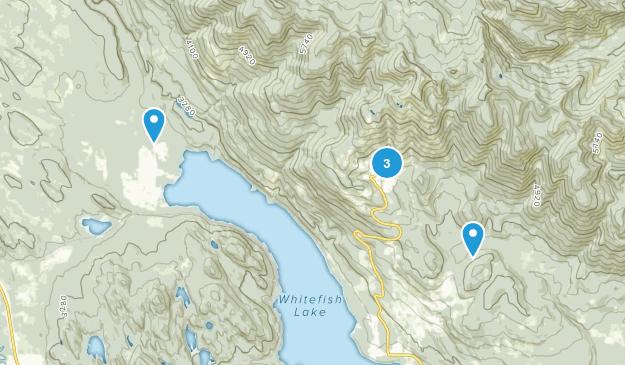 Whitefish, Montana Skiing Map