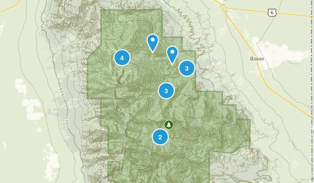 Baker, Nevada No Dogs Map