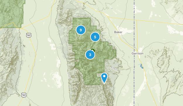 Baker, Nevada Forest Map
