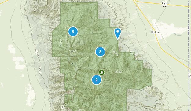 Baker, Nevada Lake Map