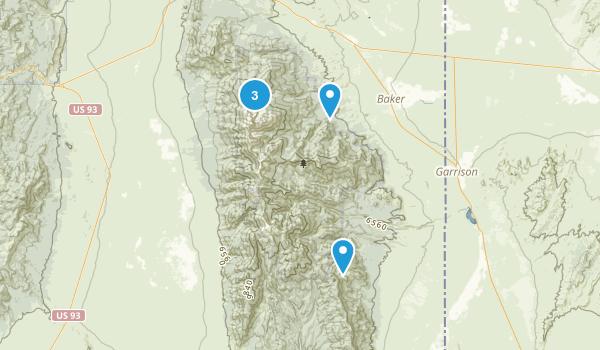 Baker, Nevada Wild Flowers Map
