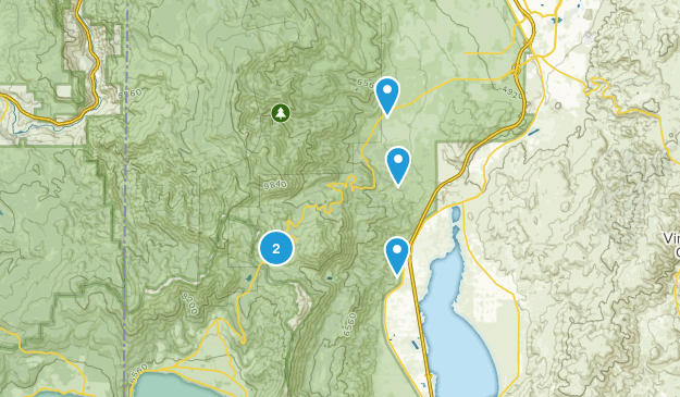 Washoe Valley, Nevada Snowshoeing Map
