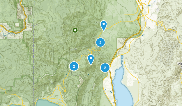 Washoe Valley, Nevada Trail Running Map