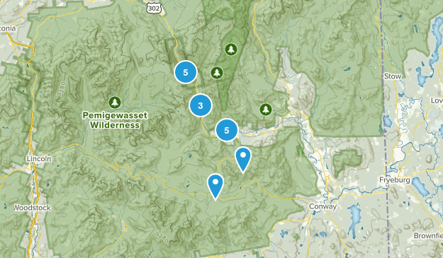 Bartlett, New Hampshire Wild Flowers Map
