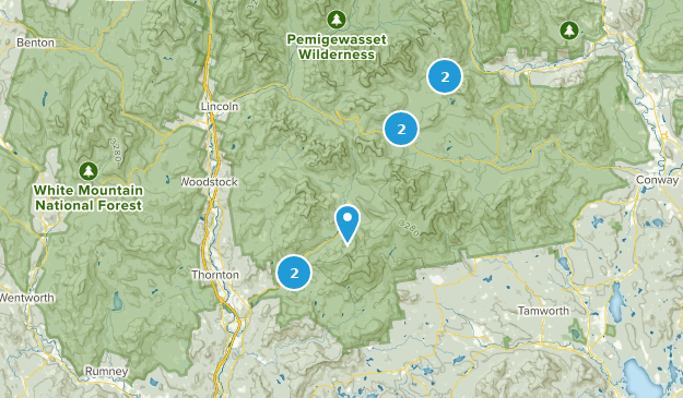 Campton, New Hampshire Bird Watching Map