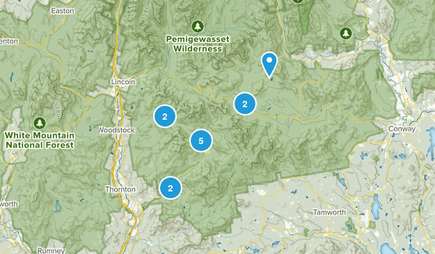 Campton, New Hampshire Dogs On Leash Map