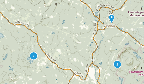 Deerfield, New Hampshire Forest Map
