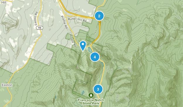 Franconia, New Hampshire Wild Flowers Map