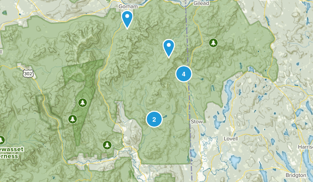 Intervale, New Hampshire Dogs On Leash Map