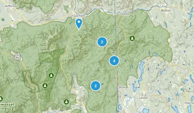 Intervale, New Hampshire Forest Map