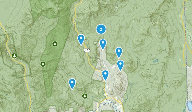 Jackson, New Hampshire Dogs On Leash Map
