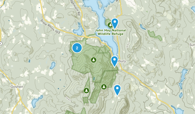 Newbury, New Hampshire Forest Map