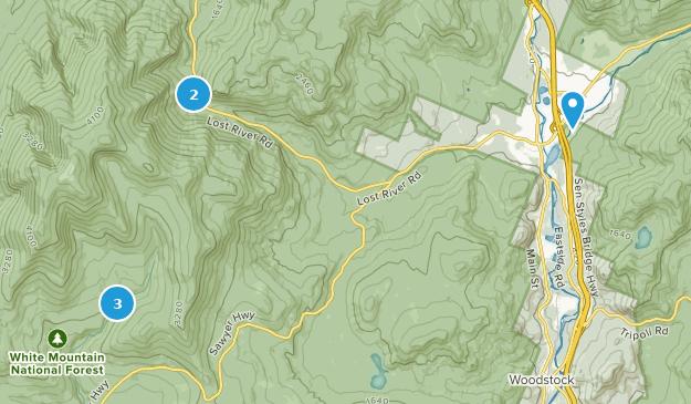 North Woodstock, New Hampshire Bird Watching Map