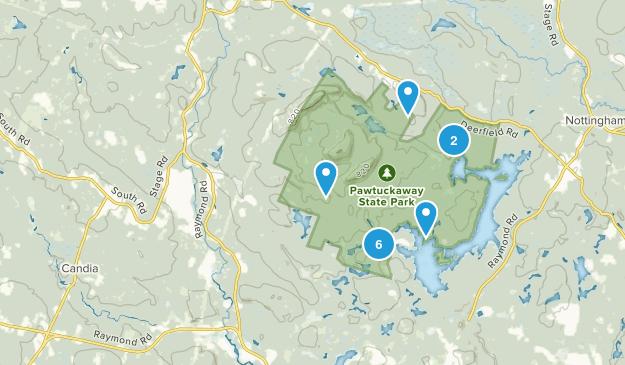Nottingham, New Hampshire Forest Map