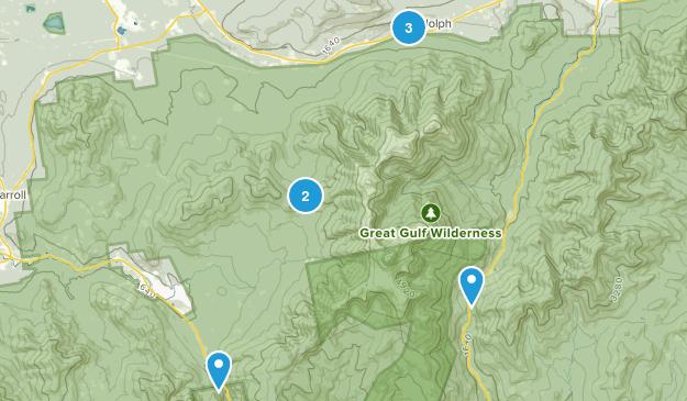 Randolph, New Hampshire Wildlife Map