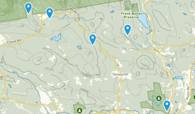 Tamworth, New Hampshire Forest Map