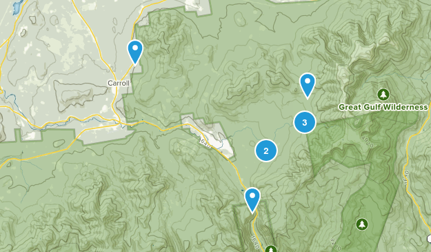 Twin Mountain, New Hampshire Wild Flowers Map