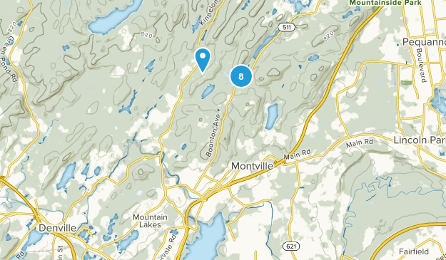 Boonton, New Jersey Dogs On Leash Map