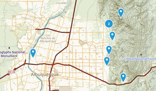 Albuquerque, New Mexico Forest Map