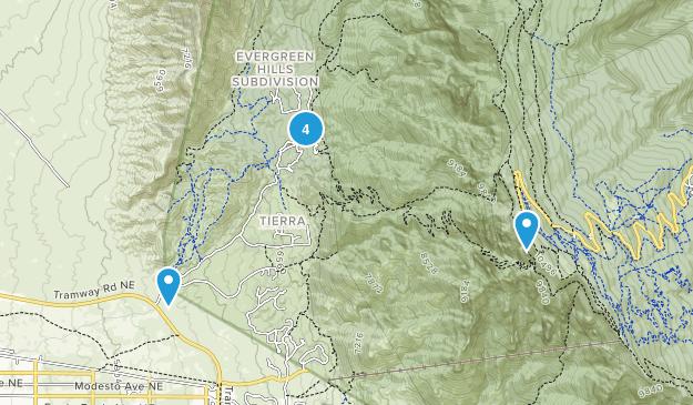 Bernalillo, New Mexico Wild Flowers Map