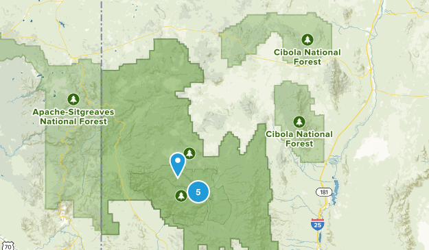 Datil, New Mexico Birding Map