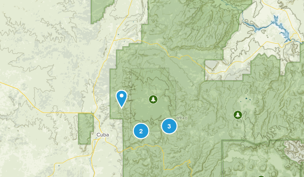 Gallina, New Mexico Forest Map