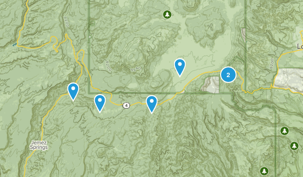 Jemez Springs, New Mexico Forest Map