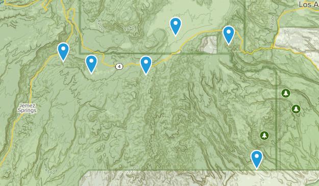 Jemez Springs, New Mexico Wild Flowers Map