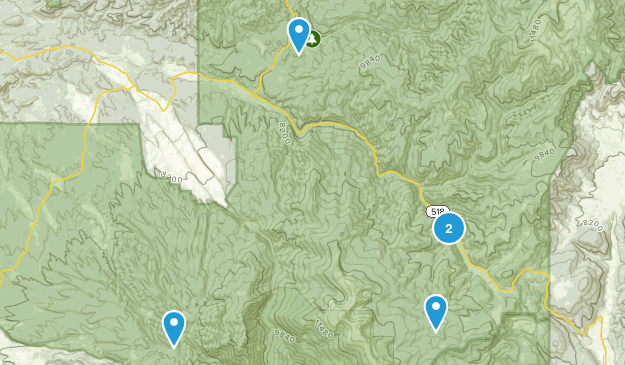 Penasco, New Mexico Forest Map