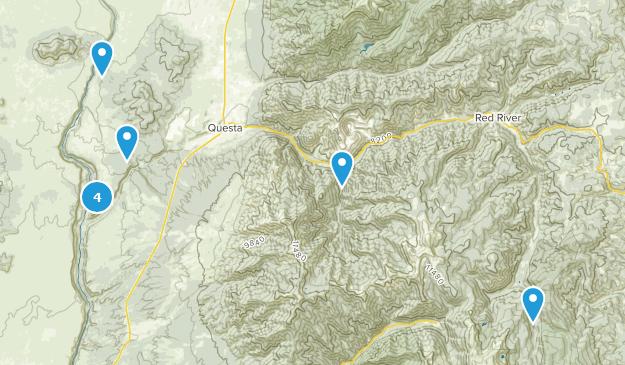 Questa, New Mexico Bird Watching Map