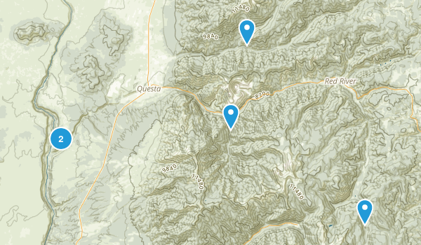 Questa, New Mexico Wild Flowers Map