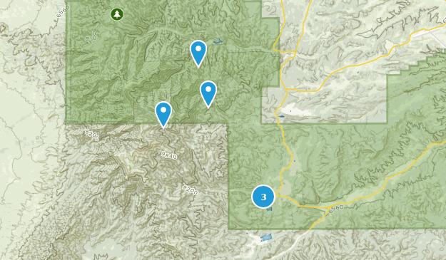 Ruidoso, New Mexico Bird Watching Map