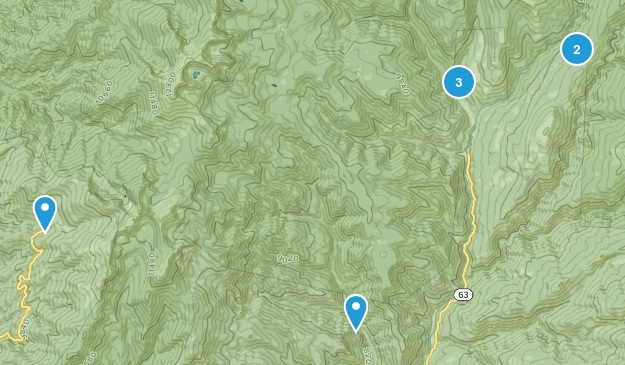 Tererro, New Mexico Wild Flowers Map