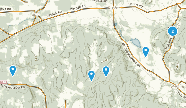 Dryden, New York Forest Map