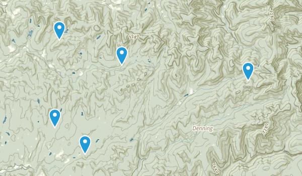 Livingston Manor, New York Camping Map