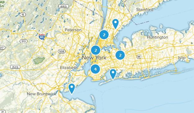 New York City, New York Wild Flowers Map