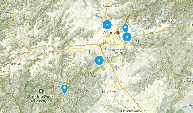 Asheville, North Carolina Wild Flowers Map