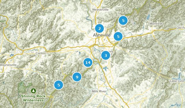 Best Wildtierpfade in der Nähe von Asheville, North Carolina ...