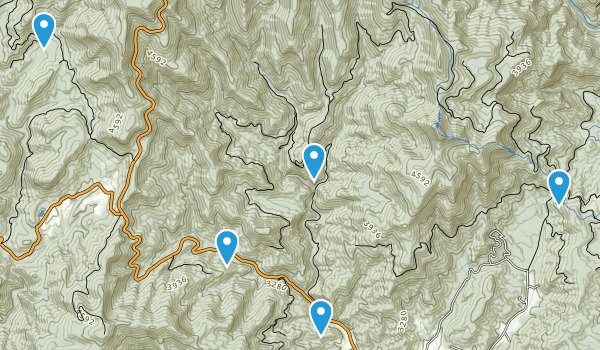 Balsam Grove, North Carolina Dogs On Leash Map