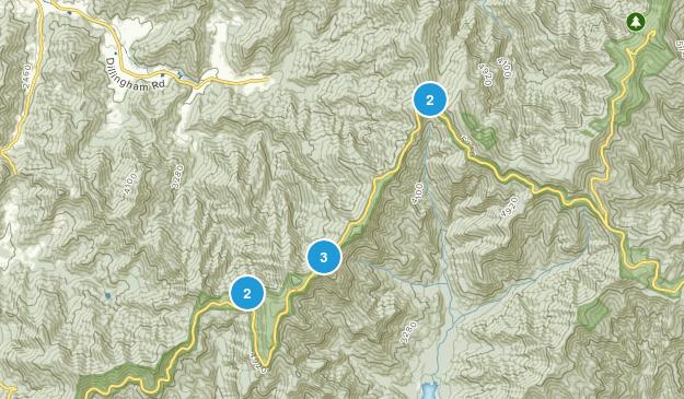 Barnardsville, North Carolina Wild Flowers Map