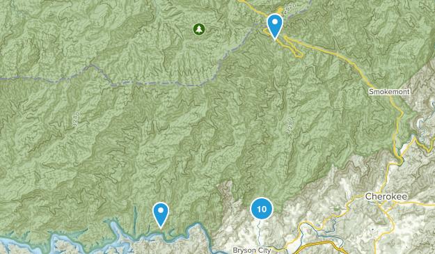 Bryson City, North Carolina Wildlife Map