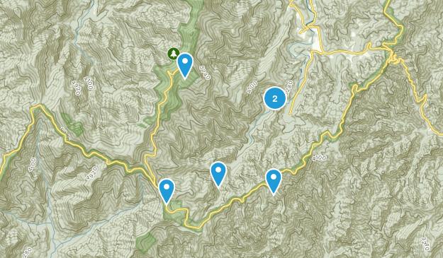 Busick, North Carolina Forest Map