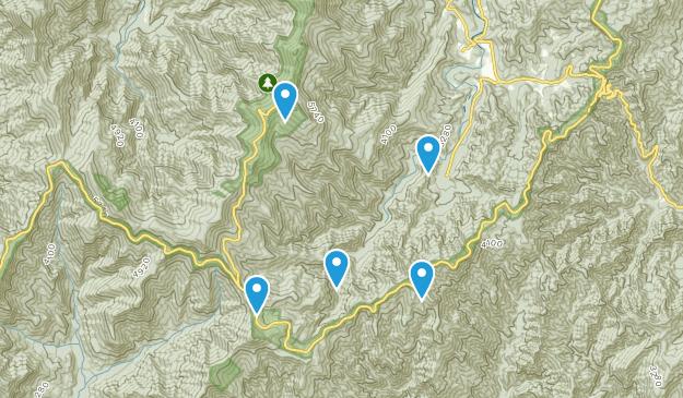 Busick, North Carolina Wild Flowers Map