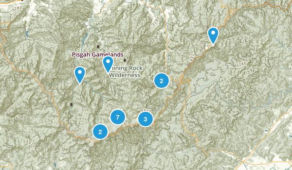 Canton, North Carolina Dogs On Leash Map